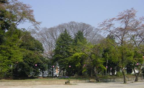 oyamahyojo2.jpg