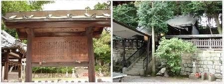 Toriigawahonden