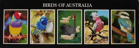 Birds_in_australia
