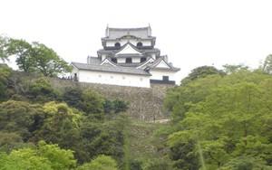Hikonejyo_2