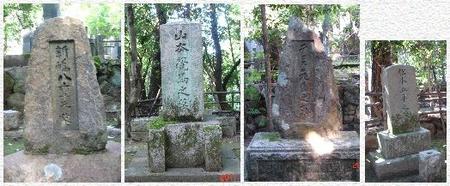 Yaekakumadavisgohei