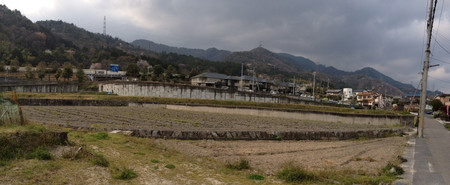 Minamishiga