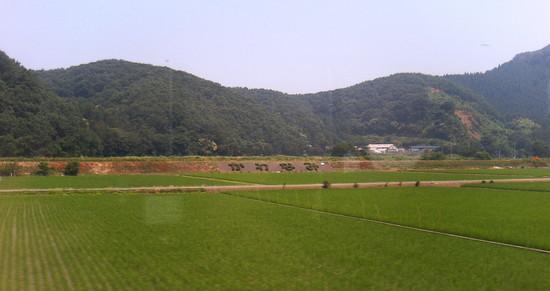 kawanami2